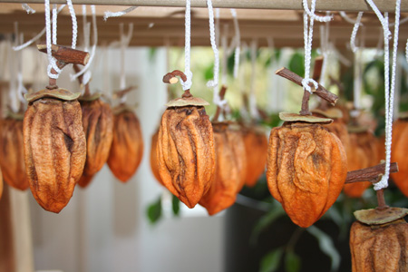 dried persimmons-hanging 3 copy