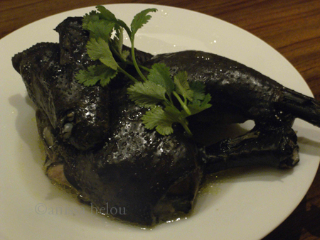 shanghai-black chicken copy