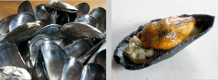 noma 4 & 4 a-mussels