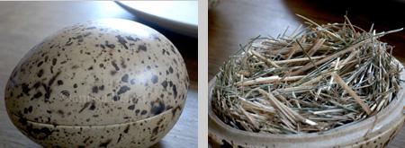 noma 9 & 9a-quail's eggs