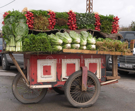 fattush-herbs radishes and lettuce cart copy