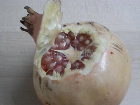 pomegranates-beginning of peeling copy