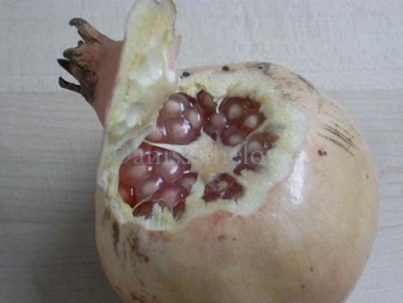 pomegranates-beginning of peeling copy