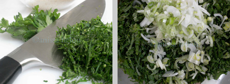 stuffed silq-chopped parsley & spring onion