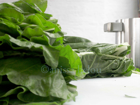 stuffed silq-swiss chard ready 2 be dunked in boiling water copy