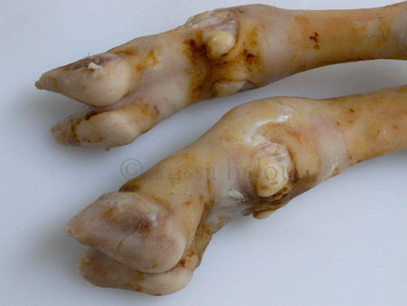 ghammeh-feet copy