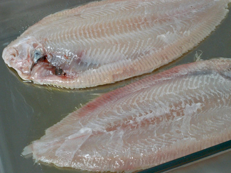 tamarind fish-the fish copy