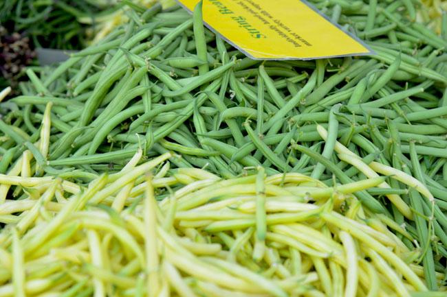 union sq farmers market - beans copy