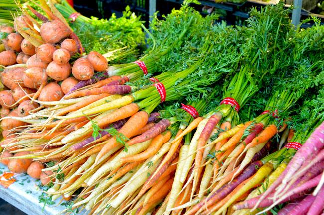 union sq farmers market - carrots copy