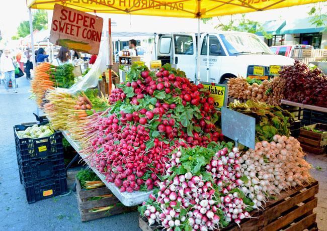 union sq farmers market - carrots & radishes copy