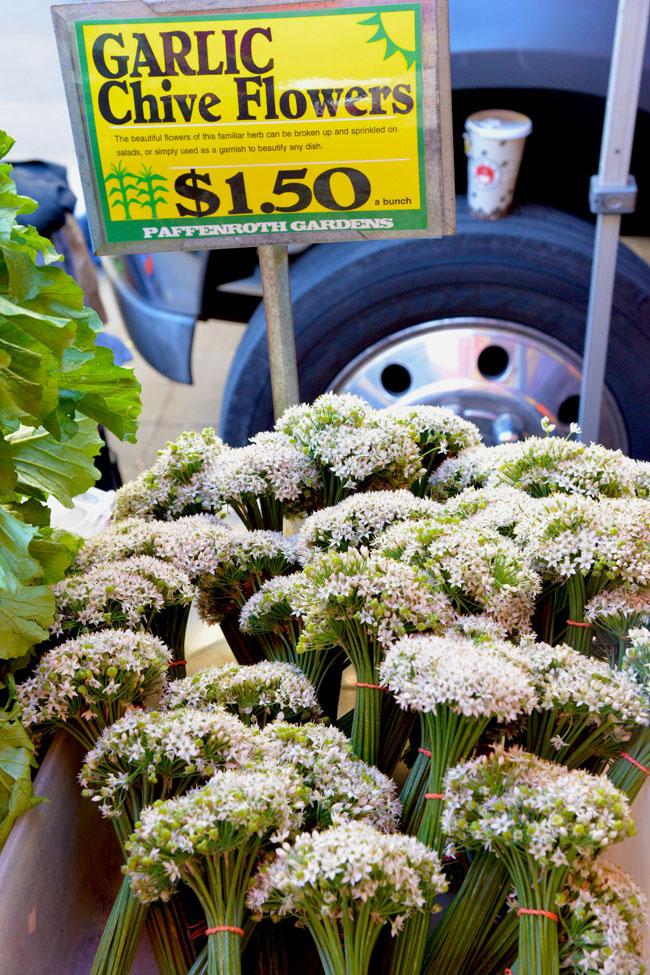 union sq farmers market - garlic flowers copy