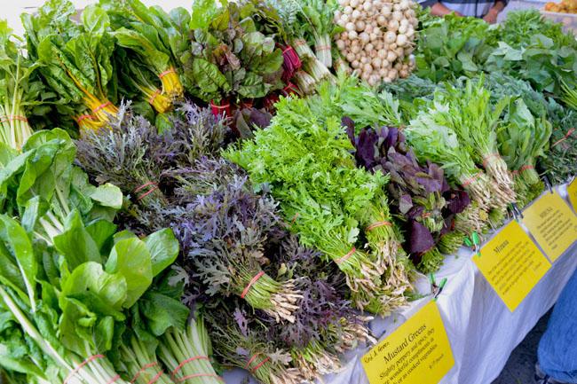 union sq farmers market - mustard greens copy