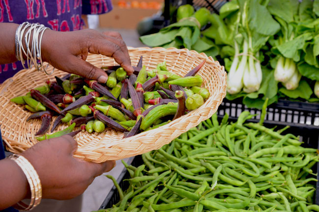 union sq farmers market - picking okra copy