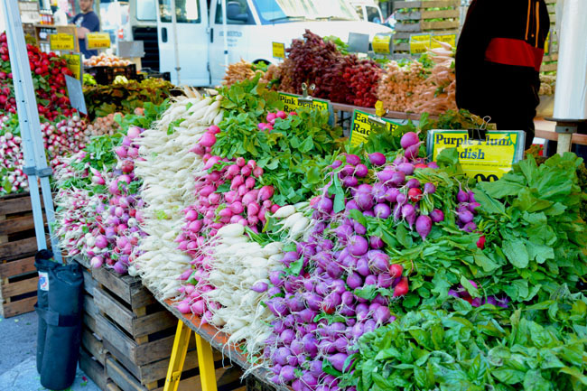 union sq farmers market - radishes copy
