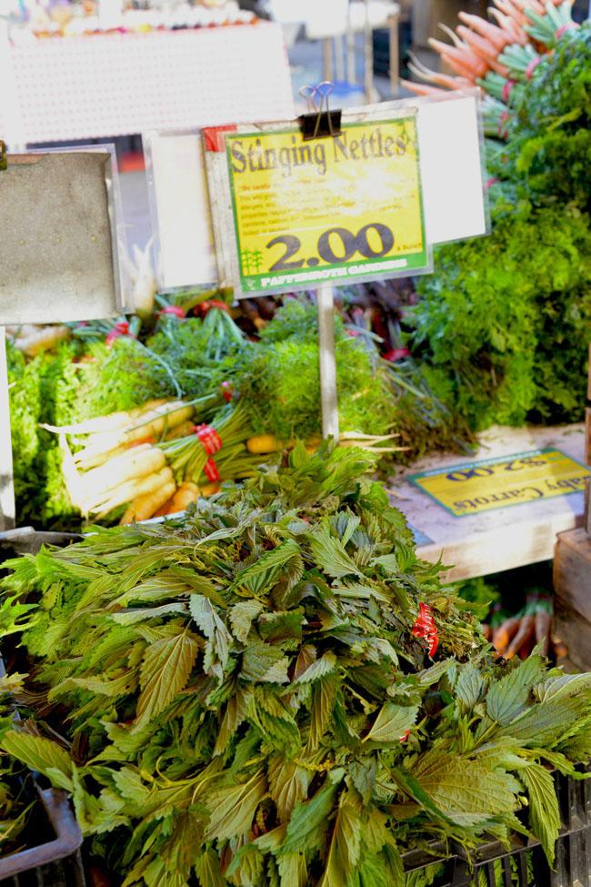 union sq farmers market - stinging nettles copy
