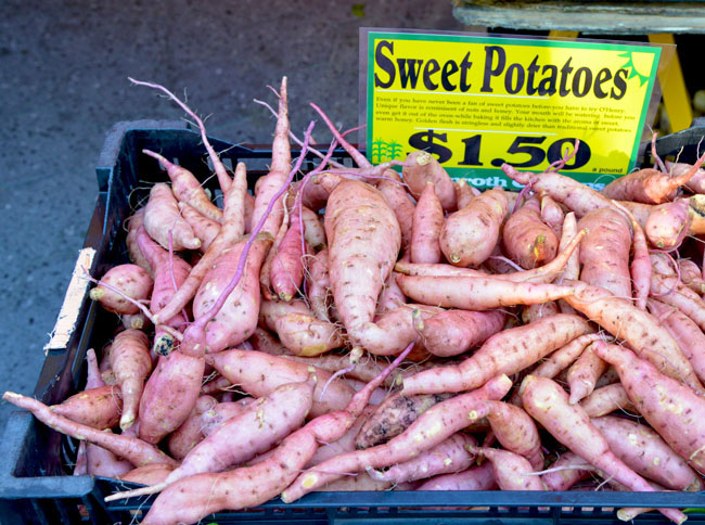 union sq farmers market - sweet potatoes copy