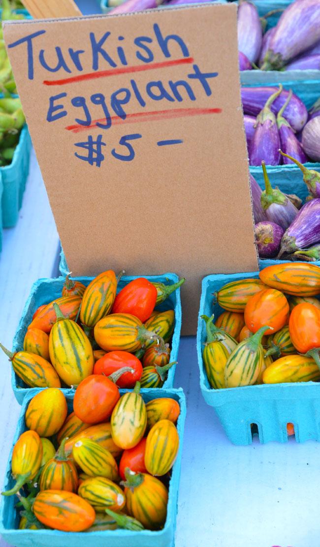 union sq farmers market - turkish eggplants copy