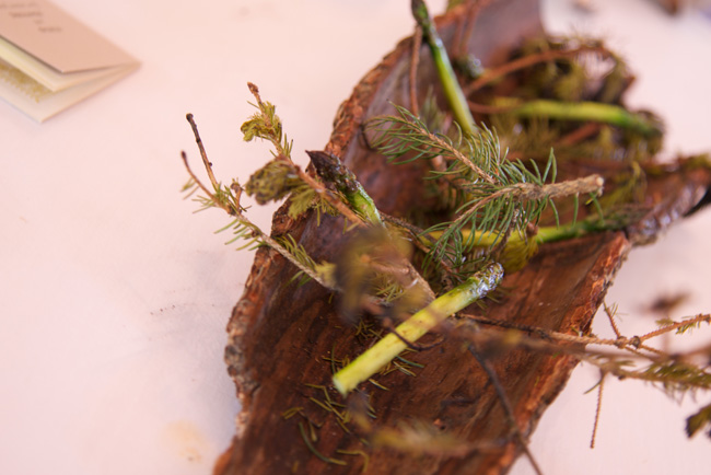 15-asparagus & pine needles copy