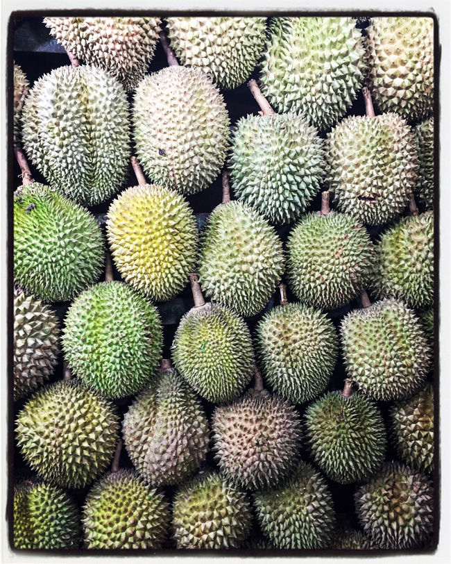 durian-medan-indonesia copy